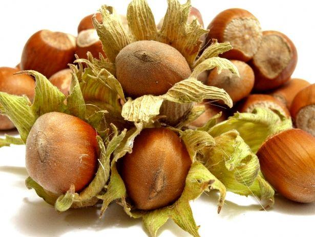 Лесной орех - очень калорийный продукт