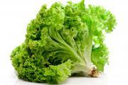 Зеленый листовой салат: состав и польза