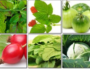Витамин К: роль в организме человека и содержание в продуктах питания
