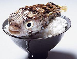 Ядовитая рыба фуга
