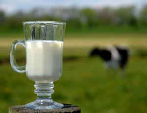Сырое молоко