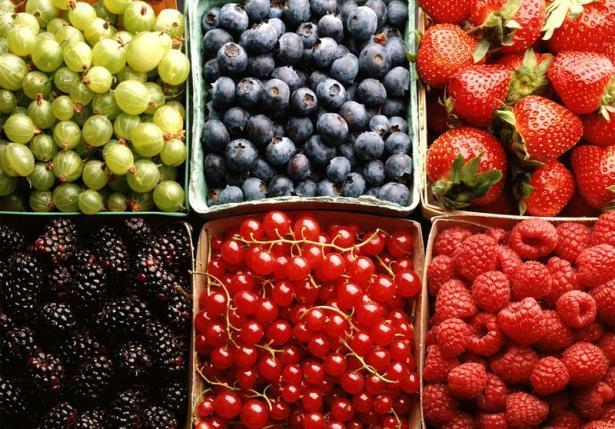 Виды ягод, как ягоды отличить от фруктов