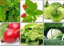 Продукты богатые витамином K